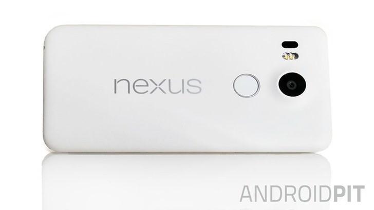 Nexus 5X. Фото AndroidPIT
