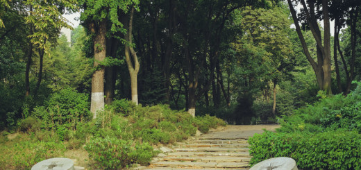 фотопрогулка - парк - фото - парк славы - мемориал