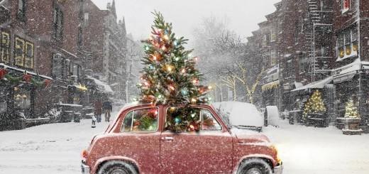 51612-Traveling-Christmas-Tree
