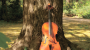 Украинские музыканты пойдут в леса